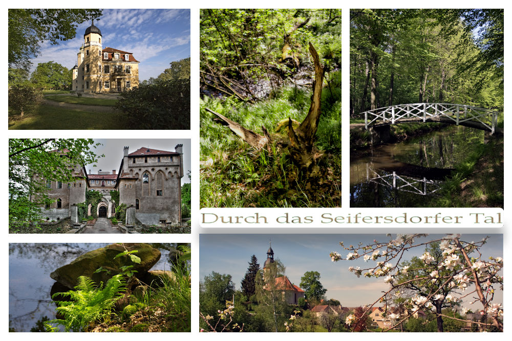 Collage Seifersdorfer Tal