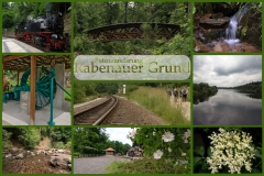 Collage Rabenauer Grund